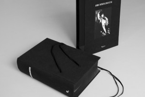 AnnDemeulemeester_CASE