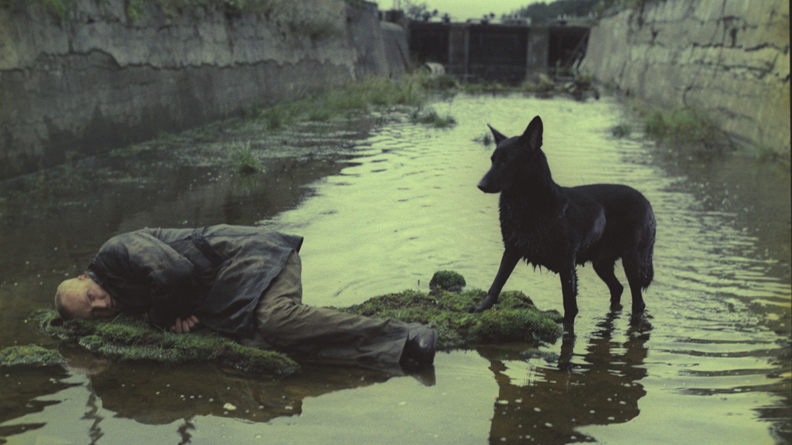 Tarkovsky's Stalker - New Restoration - culture - Tarkovsky, StyleZeitgeist, Stalker, Russian film, Lincoln Center Film Society, Lincoln Center, film, Andrei Tarkvosky, 2017