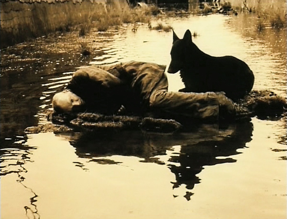 Andrey Tarkovsky: Life and Work - culture - Tarkovsky, Russian film, film, Culture, Book Review, Andrey Tarkovsky, Andrei Tarkvosky, 2019